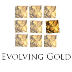 Evolving Gold Customer Service